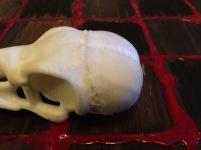 Skull Seam