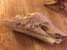 Wood Burned Bone