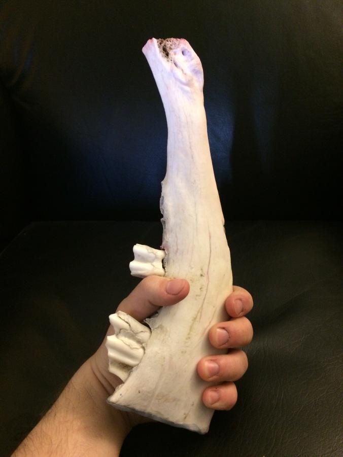 Bone Knife GRip