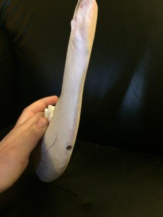 Bone Knife Blade