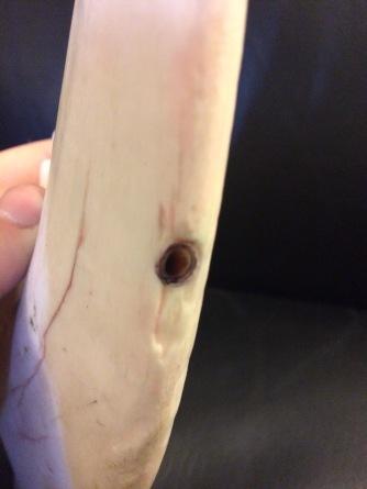 Bone Knife Blood Hole